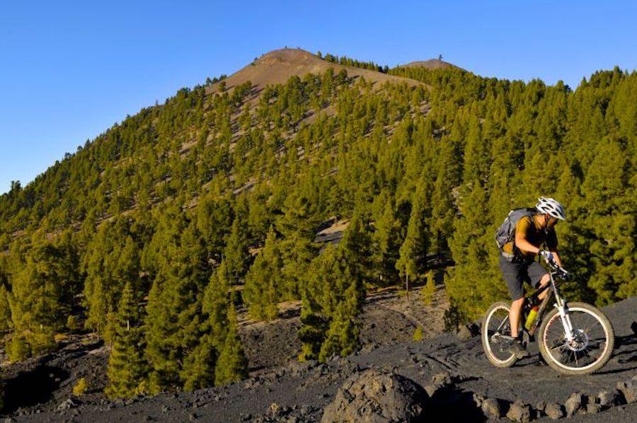 Mountain Bike - Bicicleta Montaña - La Palma