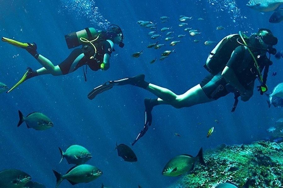 Submarinismo La Palma